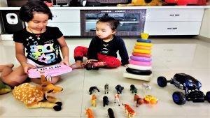 Playing Toys with Priyansh