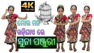 Mora mana udi jae re dance by Pari