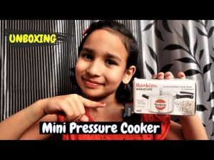 Read more about the article Unboxing Mini Pressure Cooker